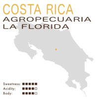 CostaRica– TarrazuDotaAgropecuariaLaFlorida (Black Honey) – Geisha