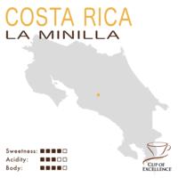 Costa Rica COE #4 – La Minilla (Natural Anaerobic)