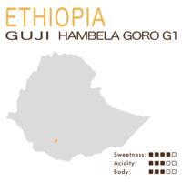 埃塞俄比亞 – 西達摩 – 古吉 – 罕貝拉 – 戈羅 – G1 – 花魁 (日曬)