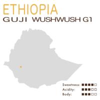 Ethiopia – Sidamo Guji WushWushG1Lot20/02 (Natural Anaerobic)