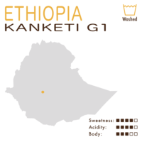 埃塞俄比亞 – 耶加雪菲 – 阿巴亞 – 坎凱蒂 G1 (水洗)