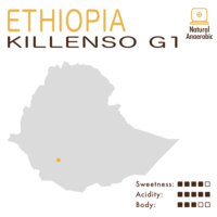 Ethiopia – Sidamo Guji Killenso G1 (Natural Anaerobic)
