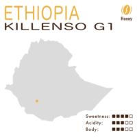 Ethiopia – Sidamo Guji Killenso G1 (Honey)