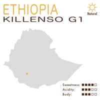 埃塞俄比亞 – 西達摩 – 古吉 – 基倫索 G1 (日曬)