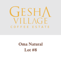 Gesha Village Oma Lot#8 (Natural) – Geisha