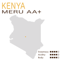 肯尼亞 – 梅魯 AA+ (水洗)