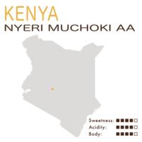 肯尼亚 – 涅里 – 木啄鸡庄园 AA (水洗)