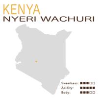 Kenya – Nyeri Wachuri AB Top (Washed)