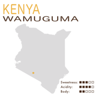 Kenya – Wamuguma (Washed)