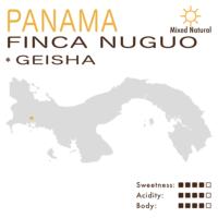 Panama – Finca Nuguo (Mixed Natural) – Geisha
