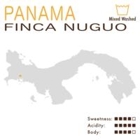Panama – Finca Nuguo (Mixed Washed) – Geisha