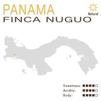 Panama – Finca Nuguo (Natural) – Geisha
