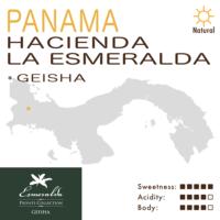Panama – Hacienda La Esmeralda – Private Collection – Green Label (Natural) – Geisha
