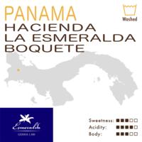 Panama – Hacienda La Esmeralda – Boquete – Blue Label (Washed) – Geisha