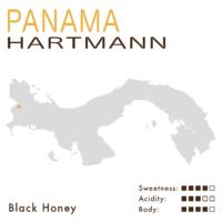 巴拿馬 – 哈特曼莊園 – 黑蜜 (日曬)