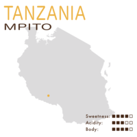 坦桑尼亞 – Mpito (水洗)