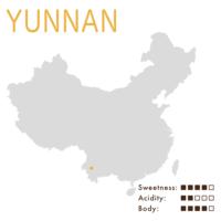Yunnan (Washed)