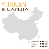 Yunnan – Puer – Silanjia (Black Honey)